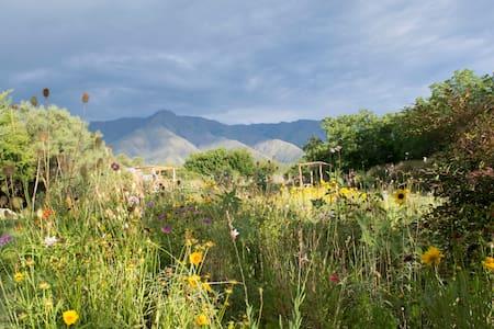 Nueva Tierra Cordoba - San Javier - Talo