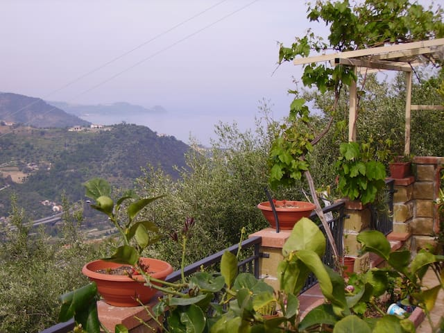 Panoramicissima villettina tra uliveto e mare - Piraino - House