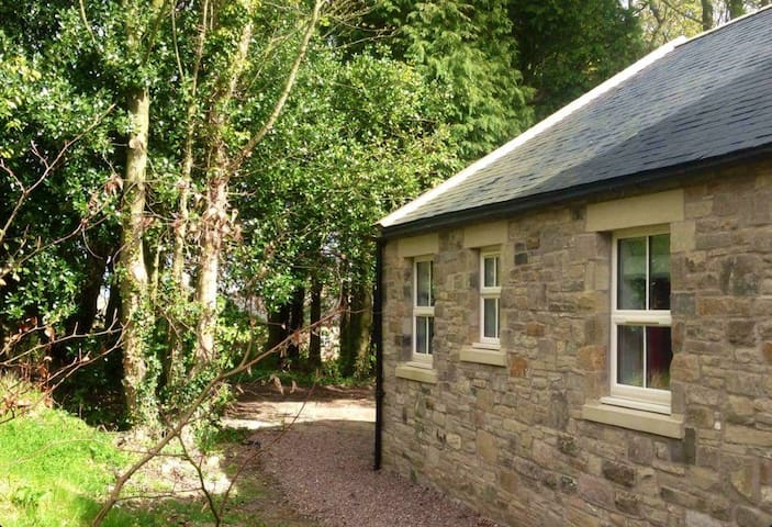 Blackberry Cottage - Acklington - Hus