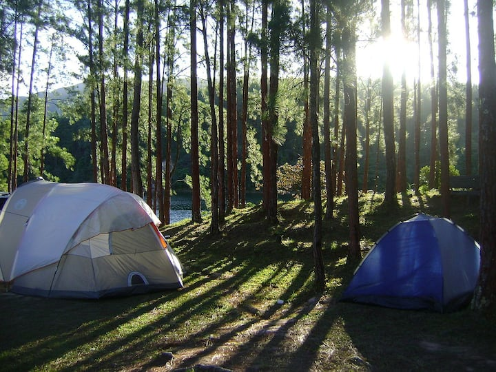 Campamento Zorros en Aculco