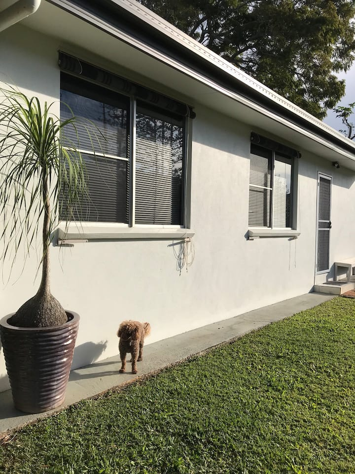 Buderim lux and pet friendly studio  Walk to shops