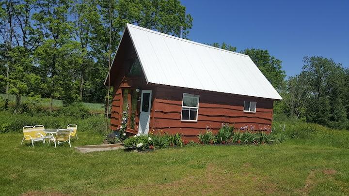 Private Cabin on Organic Farm