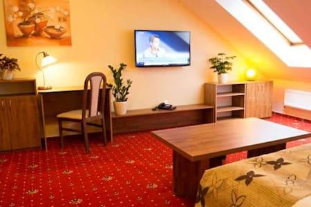 Apartmány Holiday - dvoulůžkový pokoj (č. 3) - Třebíč - Bed & Breakfast