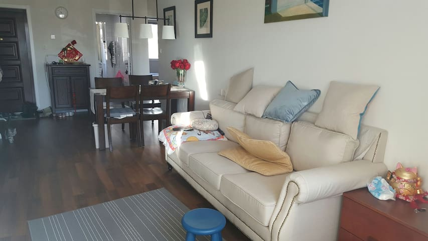 Lovely cozy 1 BR near central villa district - Beijing