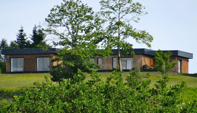 Chambre d'hôtes - La Canopée 19 - Lamazière-Basse