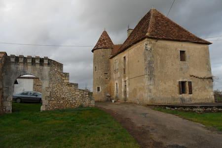 Maison XVI-XVIIe siécle au calme - Nalliers - 一軒家