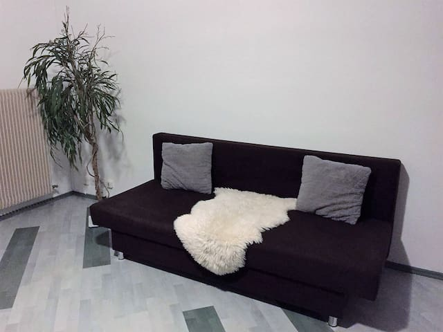 Convertible sofa in the room n°1 (2 persons).