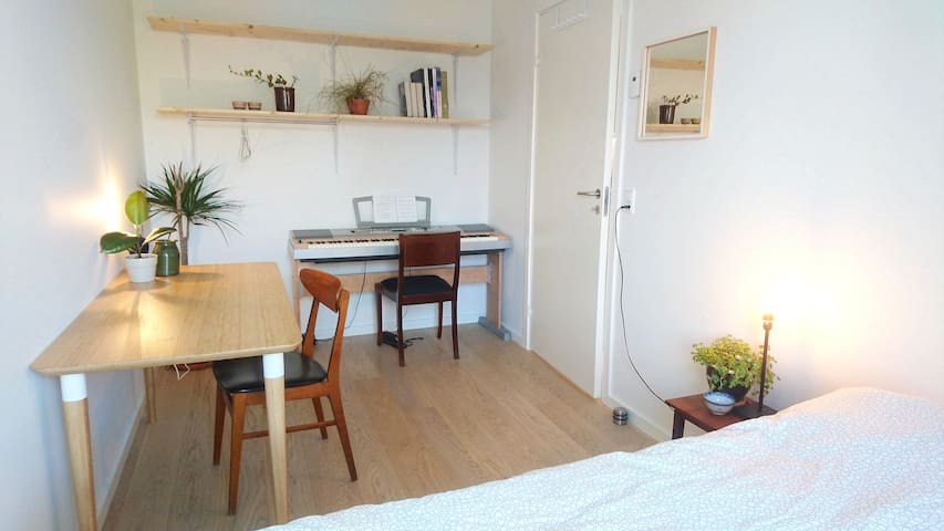 Central room in homely apartment