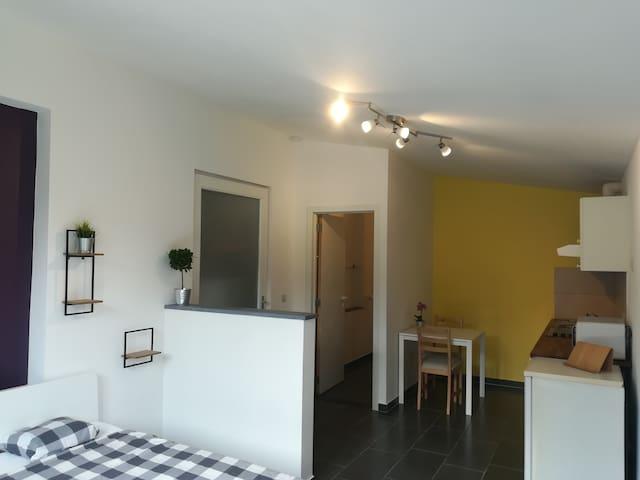 Mooie, ruime en rustig gelegen studio in Mechelen