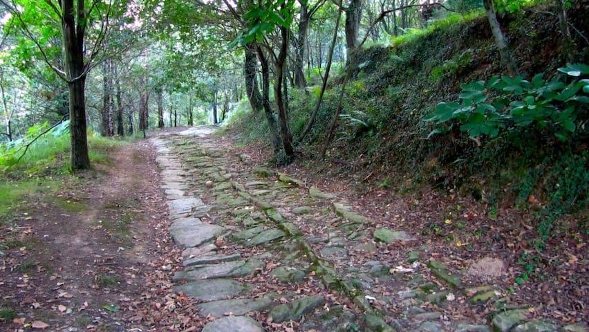 Camino romano Aizkorri