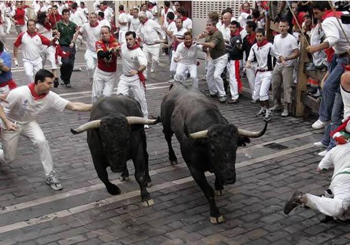 Pamplona (50 min).