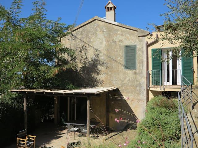 Montiano's garden