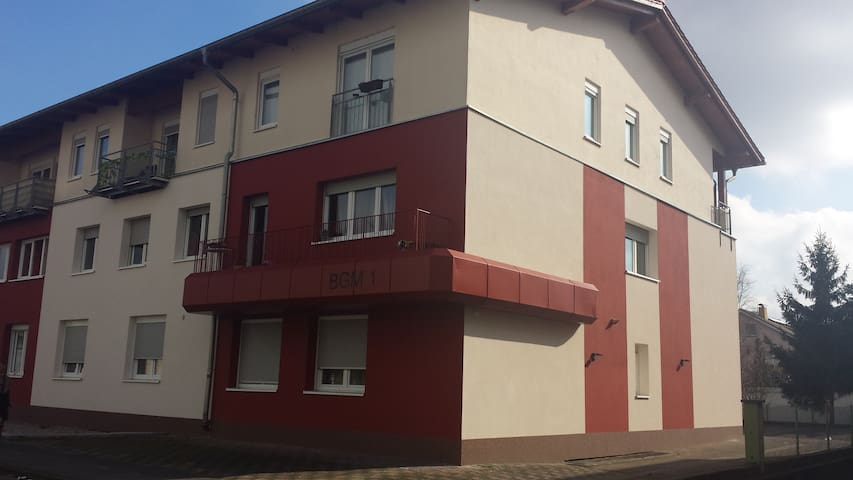 Modernes Appartment nahe Heidelberg - Eppelheim - アパート
