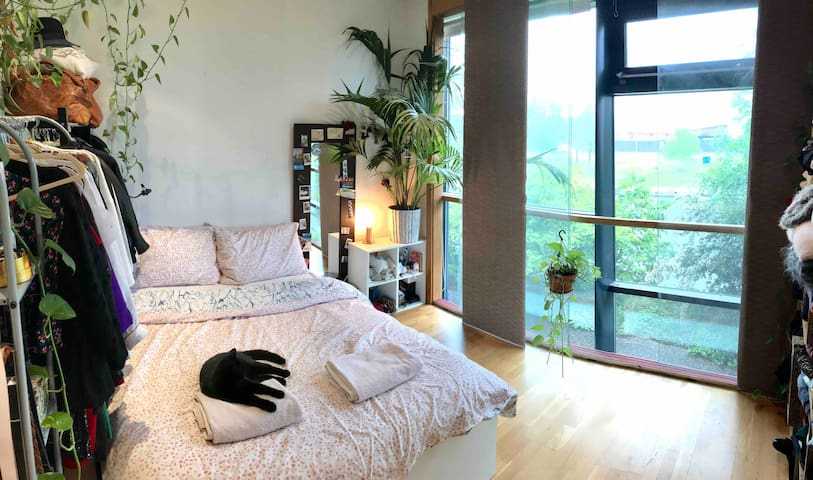 Double room in Loft on Canal