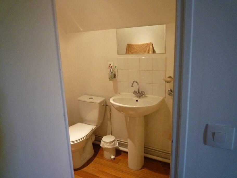 Salle de bain donnant sur la chambre.