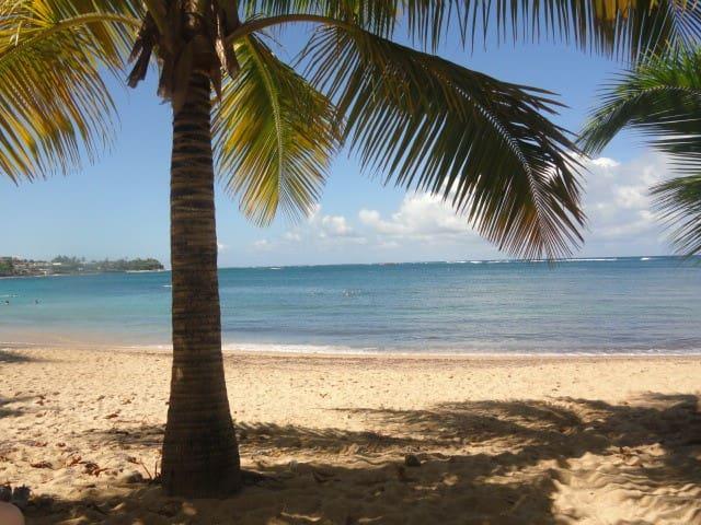 3BR Villa Tangerine - DORADO Beach - Vega Alta - Villa