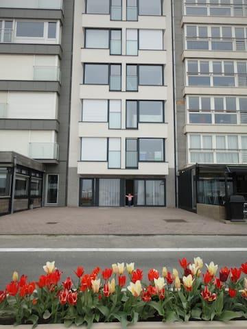Gelijkvloers app. Zeedijk te Knokke-Albertstrand
