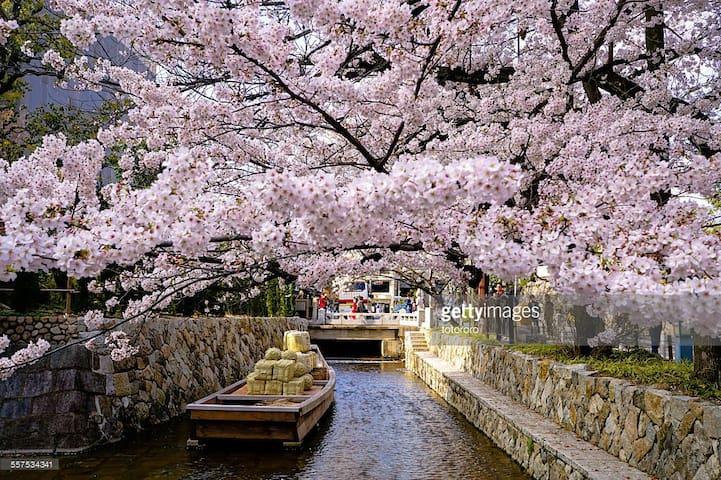 B★New open★from KYOTO STATION 400 m (5 min's walk) - Kyōto-shi - House