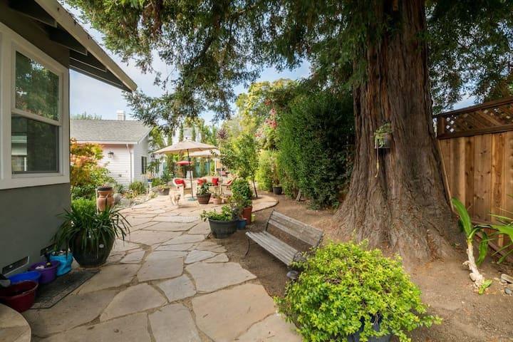 Palo Alto Gardens, a hidden gem