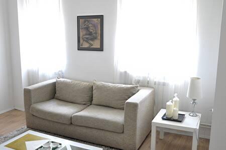 New, cozy and bright - Belgrad - Huoneisto