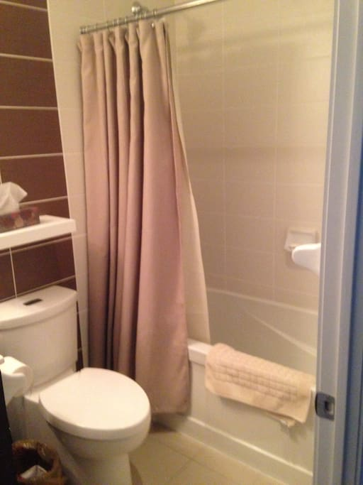 Bathtub and linens included