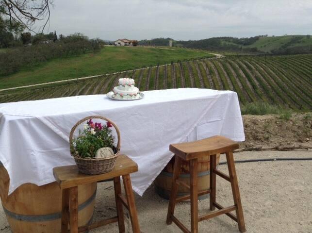 The WARWICK COTTAGE - Breathtaking Vineyard Views - Templeton - Casa