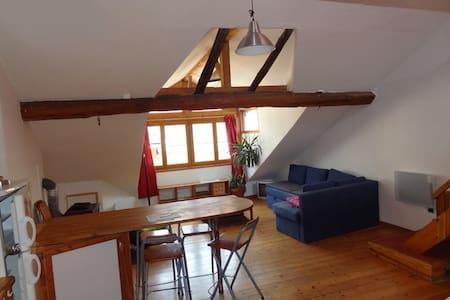 appartement loft sous les toits - Barcelonnette - Apartment