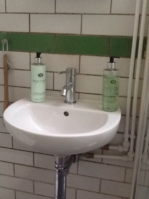 Basin above which there is a mirror bathroom cabinet with shower gel, shampoo and toothpaste. The shower room has the original green and white brick tiles.