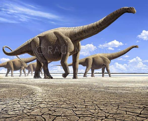 Casa Ruta de los Dinosaurios - Valdeperillo
