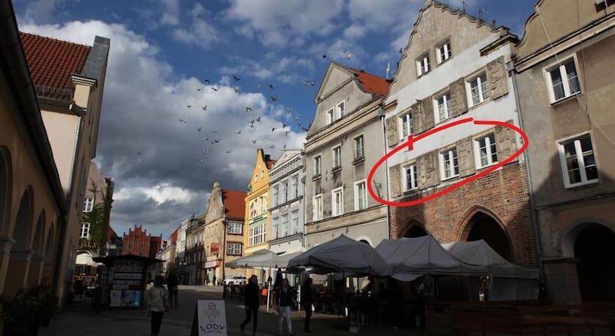 Burmistrzówka