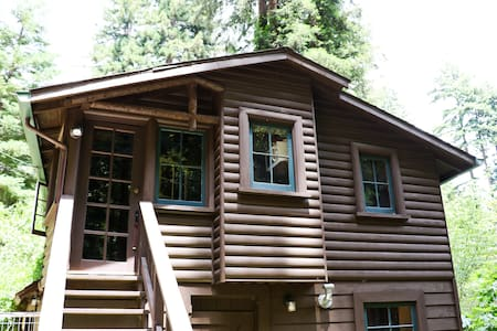 Sawmill: 81 year old cabin - Boulder Creek