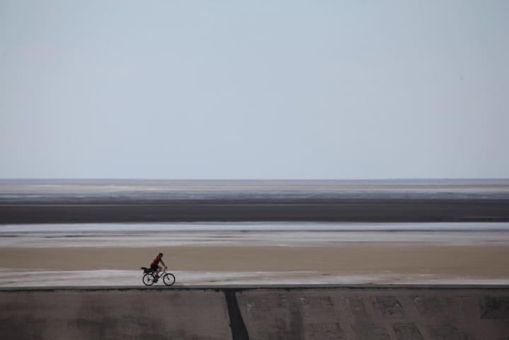 Radfahrer am Deich beim Eidersperrwerk und Weltnaturerbe Wattenmeer