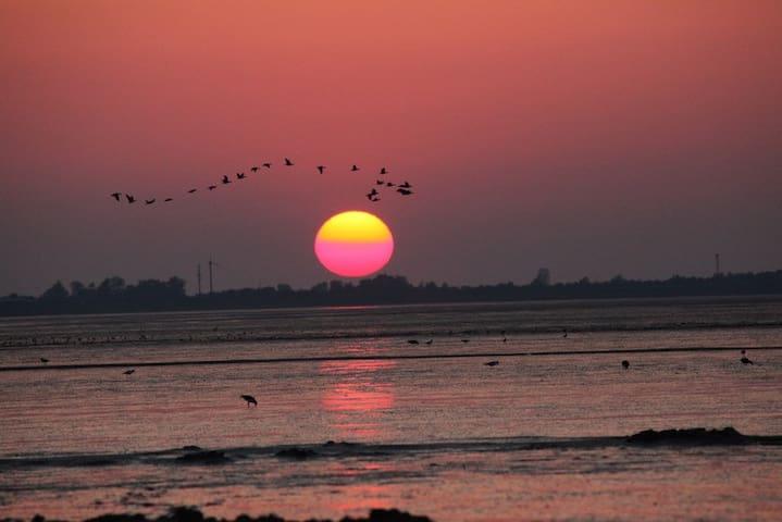 Sonnenuntergang im Speicherkoog