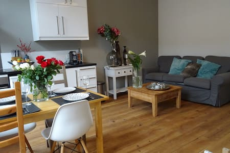 Cosy apartment. Two free bikes and free parking. - Haarlem - Kondominium