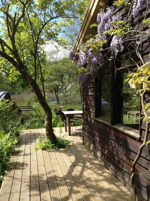 Very sunny porch