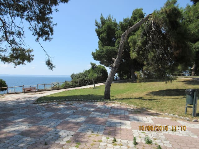 Studio Litsa No2,  50m from the beach - Metamorfosi - Appartement