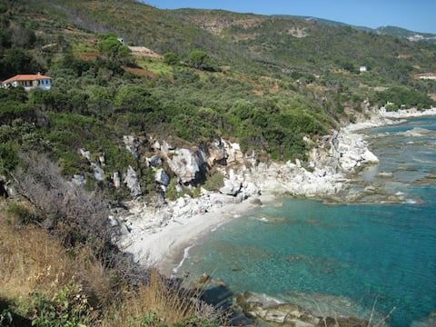 The Olive Cove