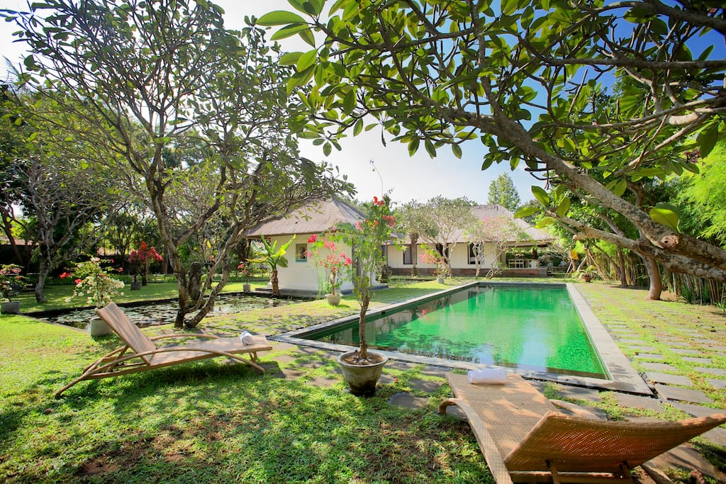 Second lotus-pond, Classic cabana, your 18-meter pool with your villa in back.
