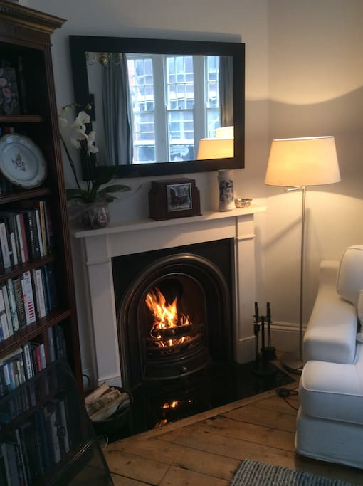 Cozy fire place and plenty of books