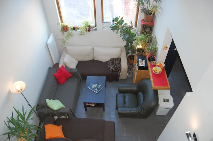 Very bright and comfortable living room. Cosy sofas for reunions.