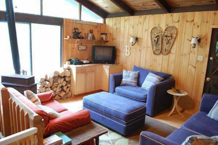 Mount Snow Ski Chalet/Summer Home