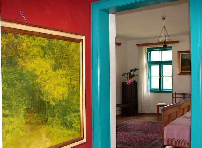 Spacious Art Nouveau-style room - Radovljica