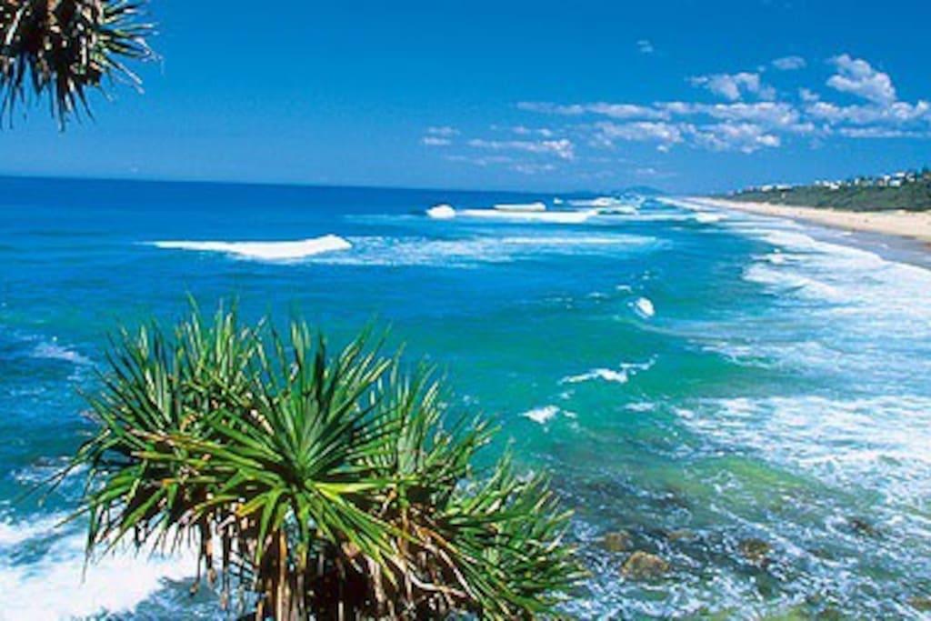 Our beautiful 'Sunshine Beach'