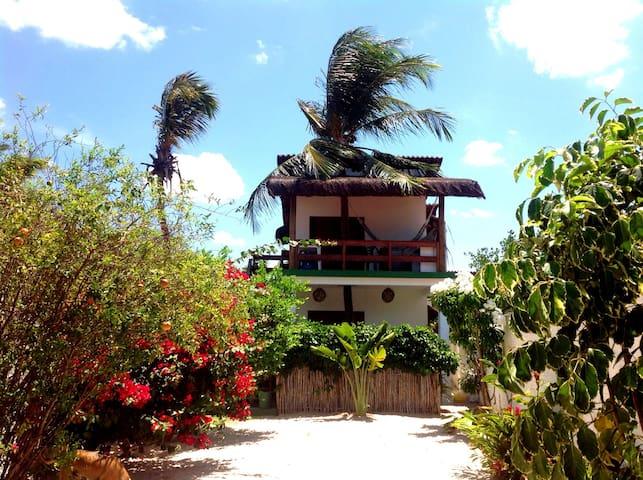 Casas das ondas SMG, Brazil - Sao Miguel do Gostoso - 木屋