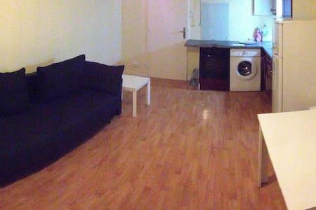 Appartement 33m2 proche de la gare - Colmar