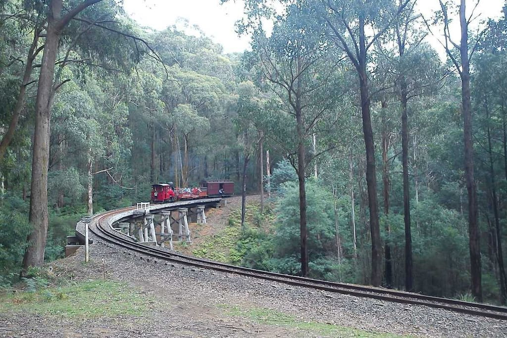 Puffing Billy passing by on the way to Emerald Lake Park.