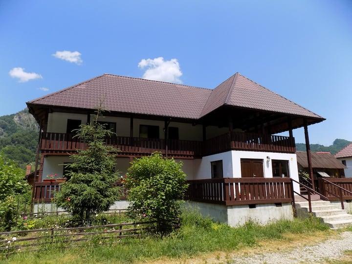 Vultureasa Guest House