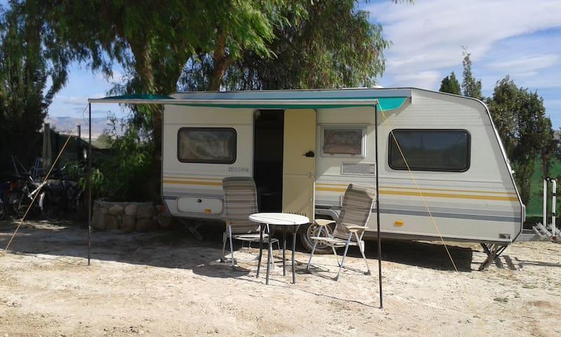 4 Pers. caravan op onze camping. - Aspe - Overig
