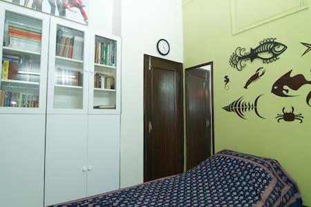 Quaint and cosy room in south delhi
