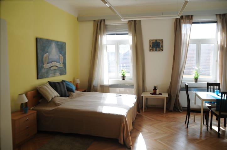 Casa de Amos - Poděbrady - Apartamento